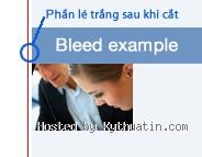 kythuatin.com/hinhanh/191_1302544390_firefox.jpg